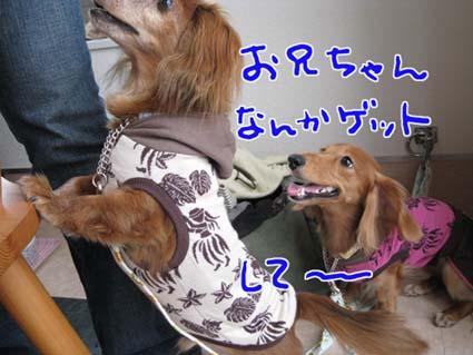 blog 09082703