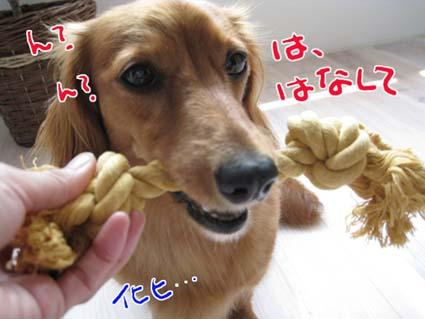 blog 09082805