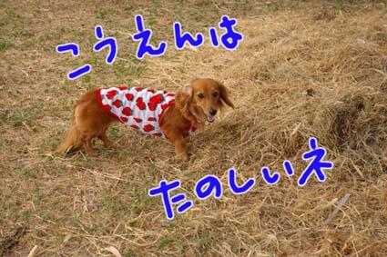 blog 09090105