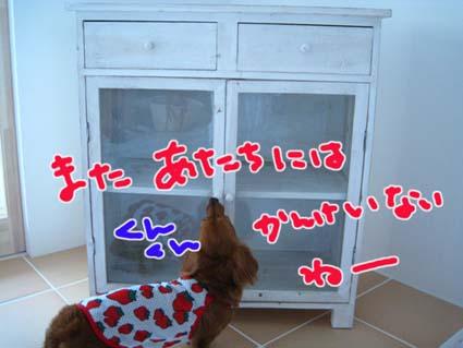 blog 09090702