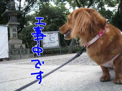 blog 09091101