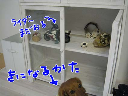 blog 09091202
