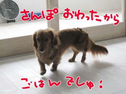BLOG09013102.jpg