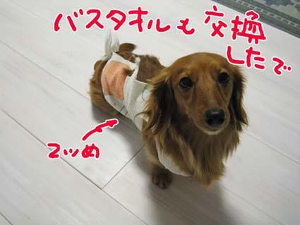 BLOG09020301.jpg
