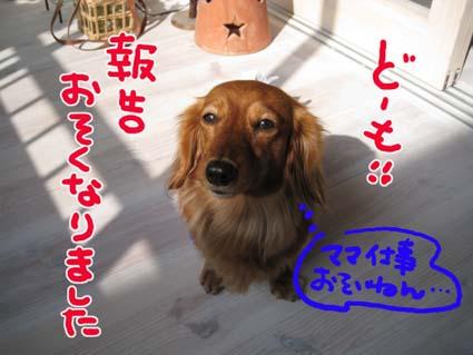 BLOG09021201.jpg