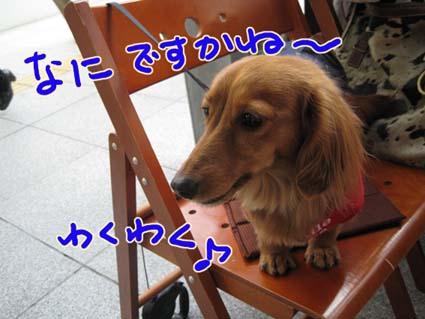 BLOG09021605.jpg