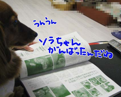 BLOG09030605.jpg