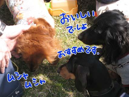 BLOG09032501.jpg
