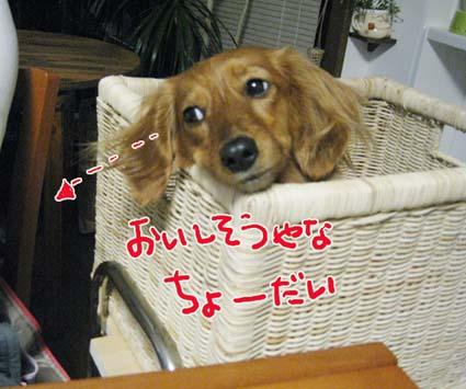 BLOG09040201.jpg