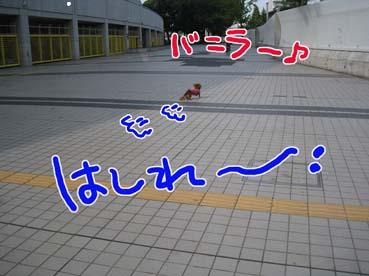 BLOG091208.jpg
