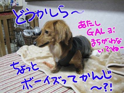 BLOG091506.jpg