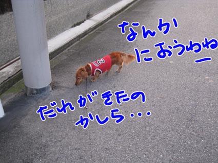 BLOG091601.jpg