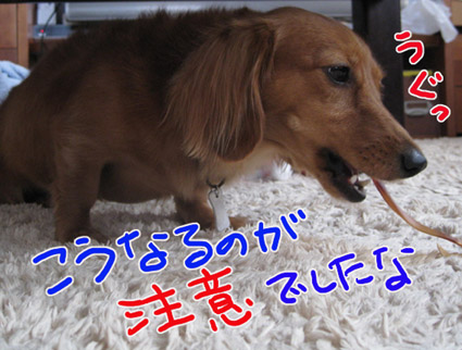 BLOG091705.jpg