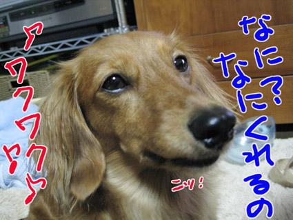 BLOG091706.jpg