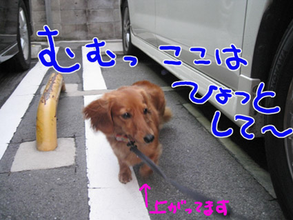 BLOG092002.jpg