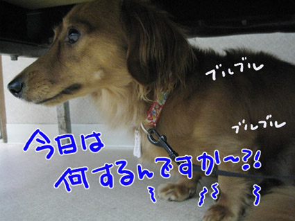 BLOG092005.jpg