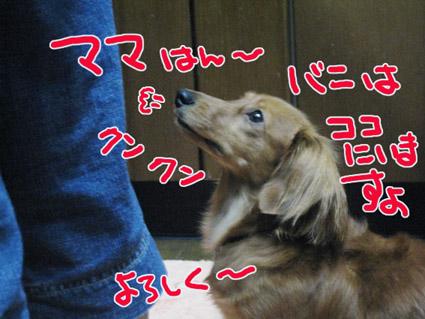 BLOG092304.jpg