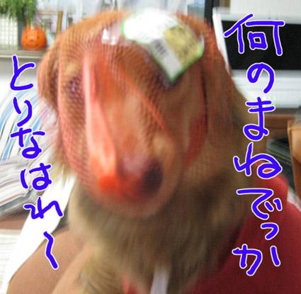 BLOG092903.jpg