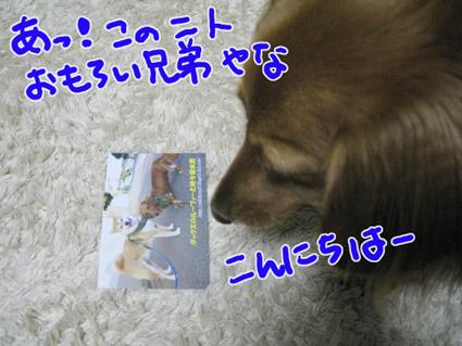 BLOG100102.jpg