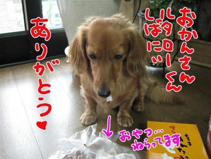 BLOG100105.jpg