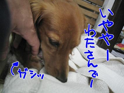BLOG100201.jpg