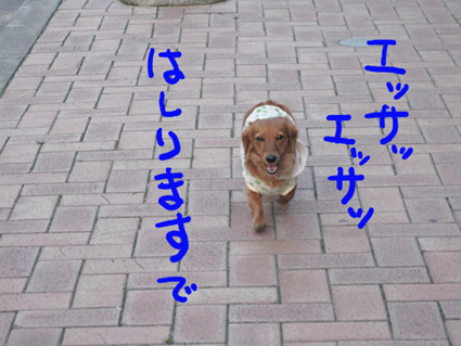 BLOG100305.jpg