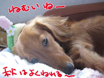 BLOG100801.jpg