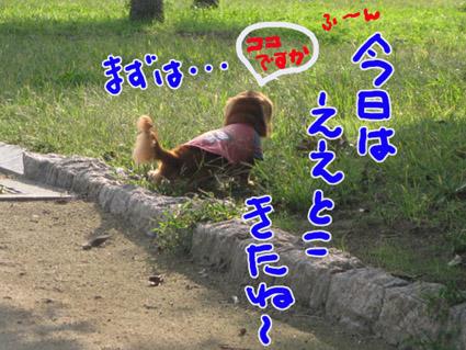 BLOG100806.jpg