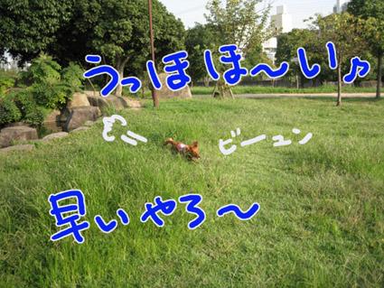 BLOG100906.jpg