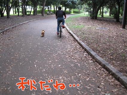 BLOG101401.jpg