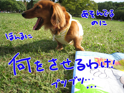 BLOG101405.jpg