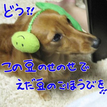 BLOG101706.jpg