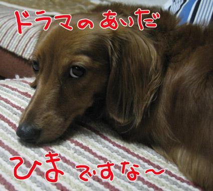 BLOG101707.jpg