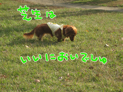 BLOG102802.jpg