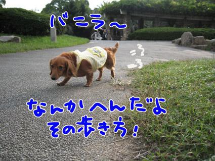 BLOG102804.jpg