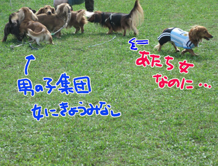 BLOG110306.jpg