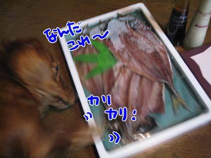 BLOG111102.jpg