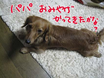 BLOG111106.jpg