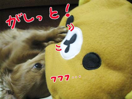BLOG111802.jpg