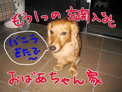 BLOG112005.jpg