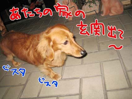 BLOG112006.jpg