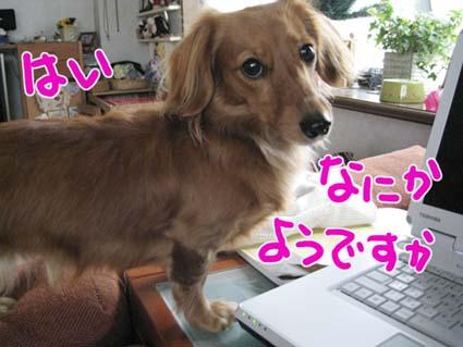 BLOG112302.jpg