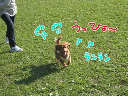 BLOG112504.jpg