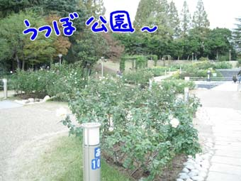 BLOG120206.jpg