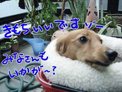 BLOG120401.jpg