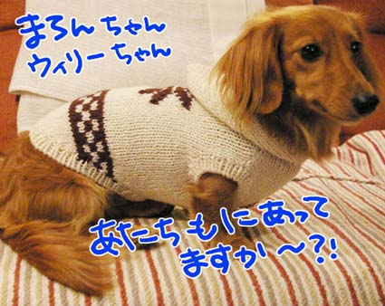 BLOG122506.jpg
