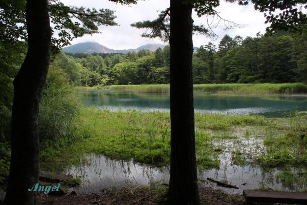 瑠璃沼と磐梯山Angel(135)