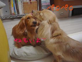 3DSC05907.jpg