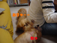 DSC05357.jpg
