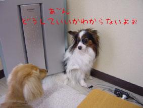 DSC05657.jpg